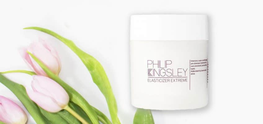 Philip Kingsley Elasticizer review