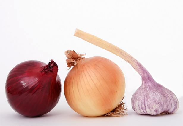 onions cause bloating
