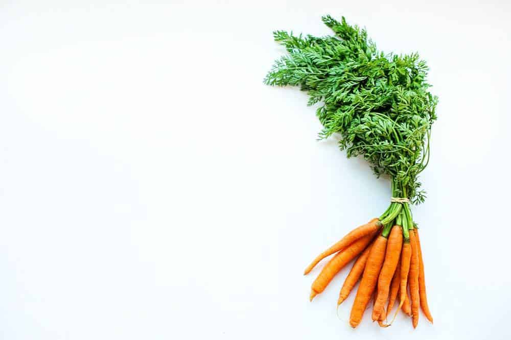 carrots promote hair growth
